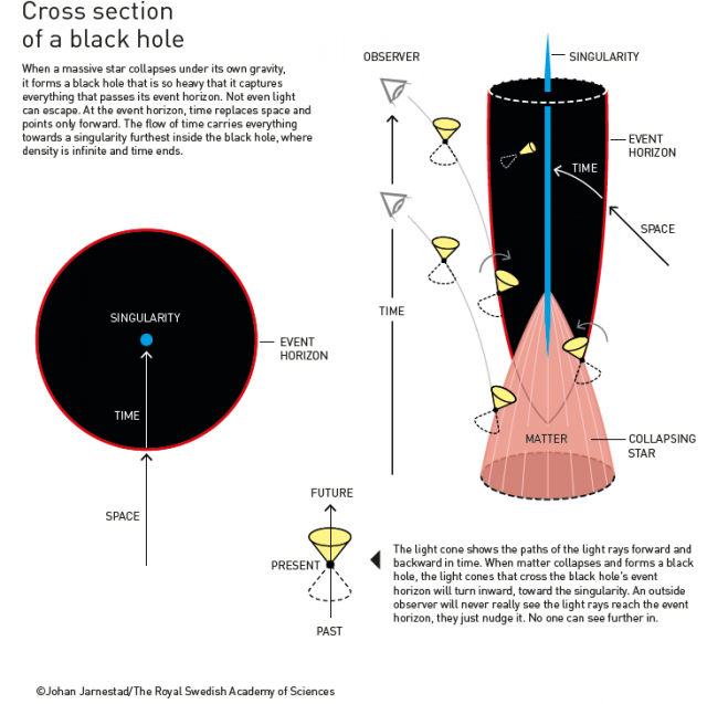 Theory of Black Holes